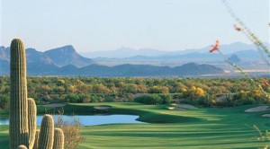 The Gallery Golf Club dove mountain marana az