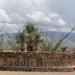 retirement community SaddleBrooke
