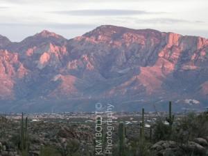 Catalina Ridge Oro Valley Arizona