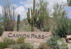 Canyon Pass Subdivision Tucson AZ