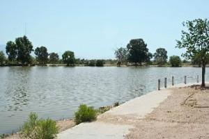 Silverbell Lake Tucson Fishing Program