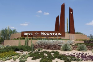 Dove Mountain Home Sales August 2016