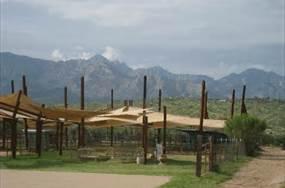 Miraval Tucson Az