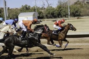 Rillito Park Race Track Tucson AZ