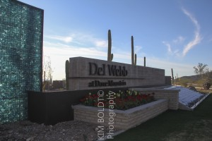 Del Webb Dove Mountain