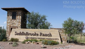 SaddleBrooke Ranch Golf Course Oracle AZ
