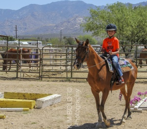 Tucson Horse Property sales April 2017